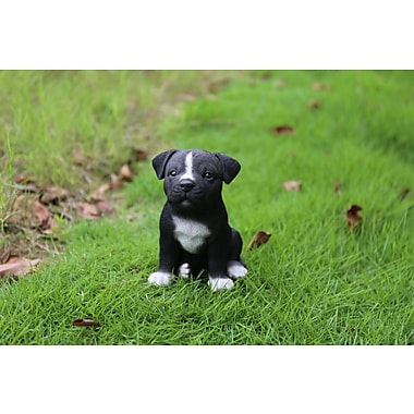 Hi-Line Gift – Statue Amis animaux, chiot Pitbull Staffordshire