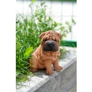 Hi-Line Gift – Amis animaux, chiot Shar Pei