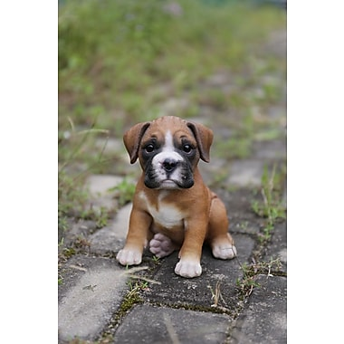 HI Line Gift – Amis animaux, Chiot Boxer