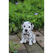 Hi-Line Gift Pet Pals, Dalmation Puppy