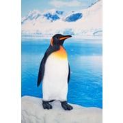 Hi-Line Gift – Pingouin, petit