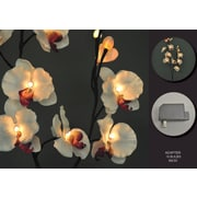 Hi-Line Gift 37331 Floral Lights, White Orchid, 16 Lights, AC Adaptor