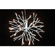 Hi-Line Gift Floral Lights, Starburst with 64 Cool White LED Lights, White Branches
