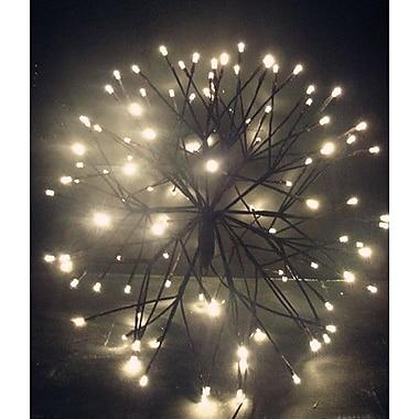 Hi-Line Gift – Lumières florales, étoile rayonnante, 110 DEL de couleur blanc chaud, branches brunes