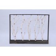 Hi-Line Gift 37429-BC, Frame-Birch Trees, 32 Warm White LED Lights