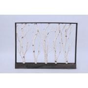 Hi-Line Gift – Cadre bouleaux 37429-BC, 32 lumières à DEL blanc chaud