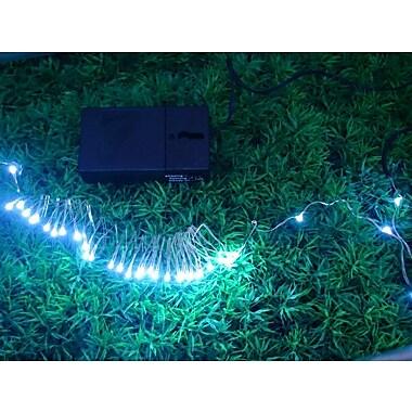 Hi-Line Gift – Guirlande de lumières DEL, 36 DEL, 2,75 m, fonctionnement à piles, blanc (37486-WT-B)