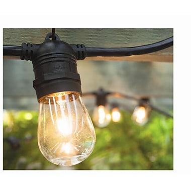 Hi-Line Gift – Guirlande de lumières, intérieur/extérieur, ampoules incluses (37502-10)
