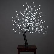 Hi-Line Gift - Lumières florales, cerisier en fleurs extérieur, 200 lumières DEL blanches, une exclusivité Hi-Line