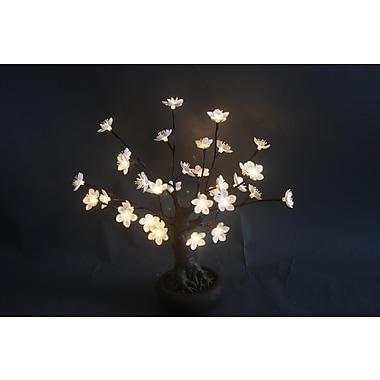 Hi-Line Gift – Arbre bonsaï dans un pot avec 36 DEL d'un blanc chaud, fleurs blanches, intérieur/extérieur