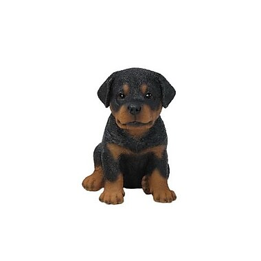 Hi-Line Gift – Statue Pet Pals, chiot rottweiler
