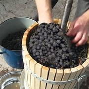 Excalibur – Pressoir à vin et à fruit de 19 pte