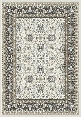 Dynamic Rugs Yazd Beige/Gray Area Rug; 2' x 3'6''