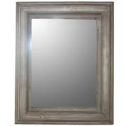 Essential Decor & Beyond Rectangled Framed Wooden Mirror