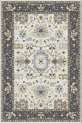 Dynamic Rugs Yazd Beige/Gray Area Rug; 2' x 3'6''