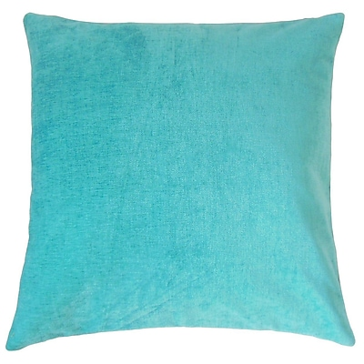 The Pillow Collection Elior Solid Velvet Throw Pillow; 22'' x 22''