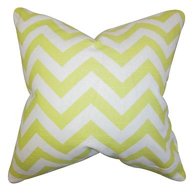 The Pillow Collection Gaines Chevron Throw Pillow; 24'' x 24''