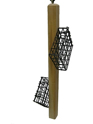Birds Choice Suet Bird Feeder (WYF078279527776) photo