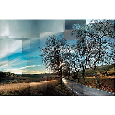 Artissimo Designs Penedes Vineyards Gallery-Wrapped Canvas, 36