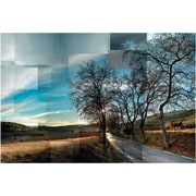 "Artissimo Designs Penedes Vineyards Gallery-Wrapped Canvas, 36"" x 34"" (11201CV170)"