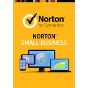 Norton Small Business, 10 Devices [Download]