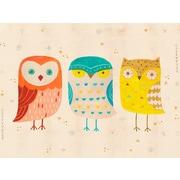 Oopsy Daisy Three Wise Owls Wall Mural; 28'' H x 35'' W x 0.02'' D