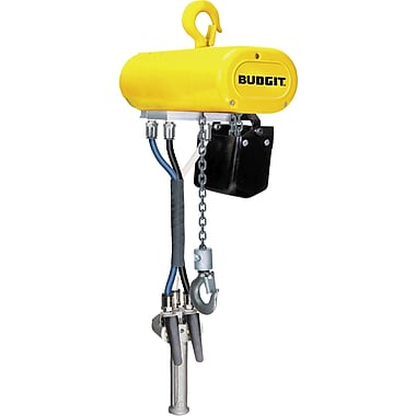Budgit Compact Air Chain Hoists, Lift: 10', Capacity: 500 Lbs. (0.25 Tons) (931894)