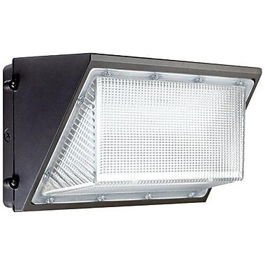 ElcoLighting 1-Light Outdoor Flush Mount