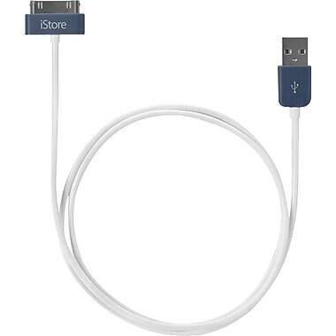 iStore – Câble de recharge et de synchronisation 30 broches, longueur de 1 mètre