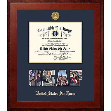 PATF Air Force Discharge Honors Picture Frame; 8'' x 10''
