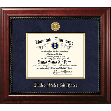 PATF Air Force Discharge Executive Picture Frame; 14'' x 10''