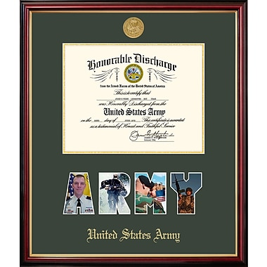 PATF Army Discharge Petite Picture Frame; 11'' x 14''