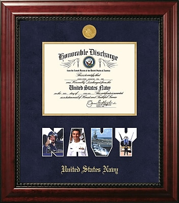 PATF Navy Discharge Executive Picture Frame; Gold