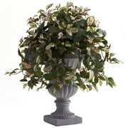 Nearly Natural Hoya Plant in Urn