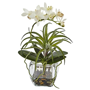 Nearly Natural Moreno Orchid and Succulent Arrangement in Vase