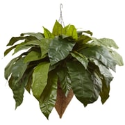 Nearly Natural Giant Bird s Nest Fern Hanging Plant in Basket