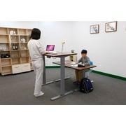 Flexispot Standing Desk; Mahogany Top/Silver Frame
