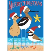 DicksonsInc Christmas Shorebirds 2-Sided Garden Flag