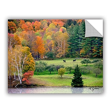 ArtWall Killington, Vermont by George Zucconi Art Appeelz Removable Wall Mural