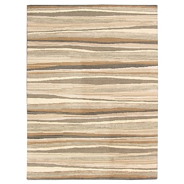 TaranDesigns Aspen Hand-Woven Brown/Beige Area Rug