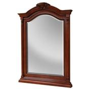 Hazelwood Home Gus Arch/Crowned Top Brown Bathroom Mirror