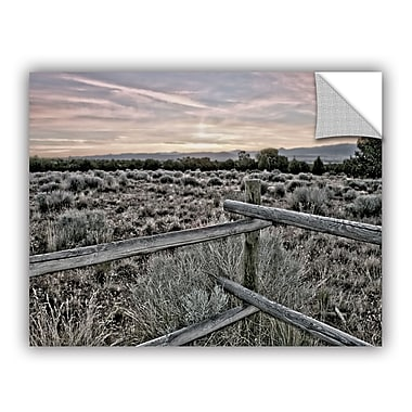 ArtWall ArtApeelz Intersection of the Tortoise And Hare by Mark Ross Photographic Print on Canvas