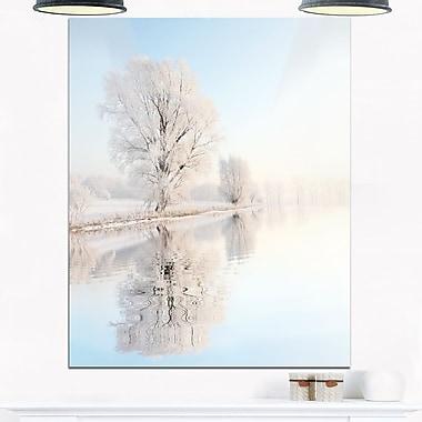 Frosty Winter Tree by Rising Photo Metal Wall Art, 12x28, (MT6927-12-28)