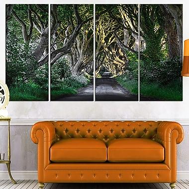 Art mural en métal, les haies sombres en Irlande, photo, 48 x 28, 4 panneaux (MT7034-271)