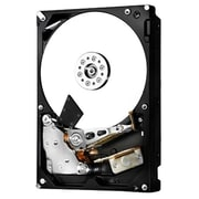 HGST Ultrastar 7k6000 6TB SAS Internal Hard Drive