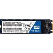 WD® Blue™ 1TB M.2 2280 SATA Internal Solid State Drive (WDS100T1B0B)