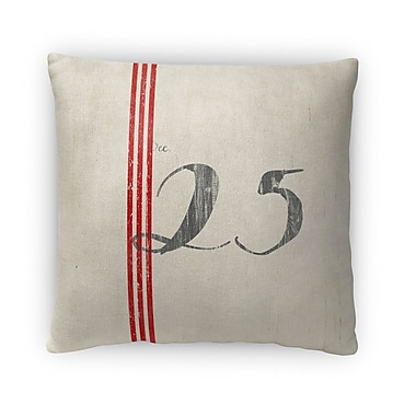 Kavka 25 Fleece Throw Pillow; 16'' H x 16'' W x 4'' D