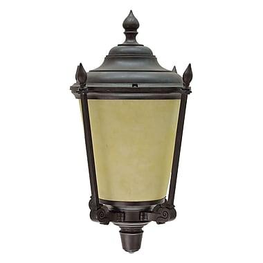 Aspen Creative Corporation 1-Light Outdoor Wall Lantern; Medium