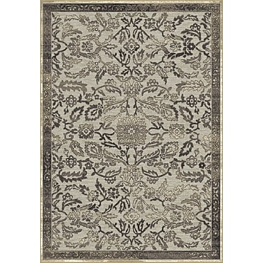 Dynamic Rugs Genova Gray Area Rug; Rectangle 7'10'' x 10'10''