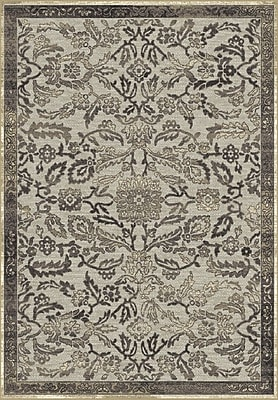 Dynamic Rugs Genova Gray Area Rug; Rectangle 3'6'' x 5'6''